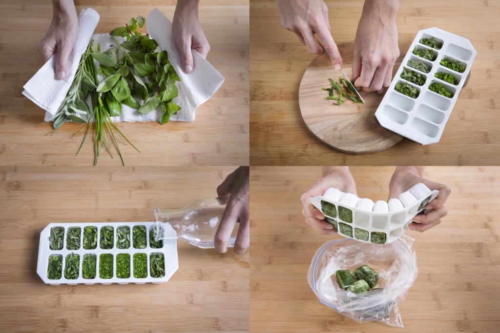 glacon - herbes aromatiques
