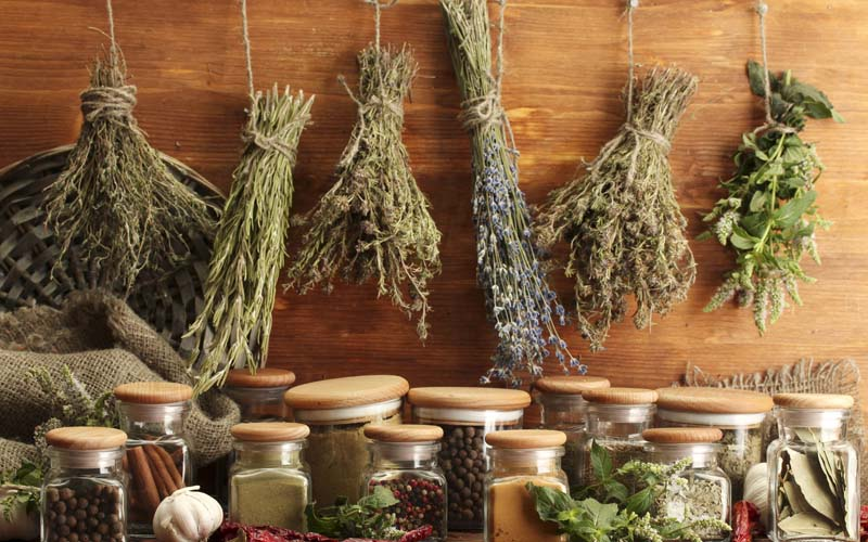 herbes aromatiques sechees